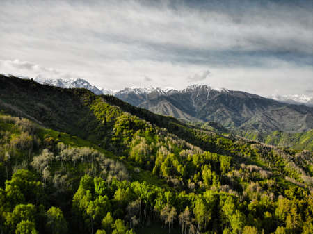 Aerial view of green forest in beautiful mountains at sunny day. Photo taken with Drone Reklamní fotografie