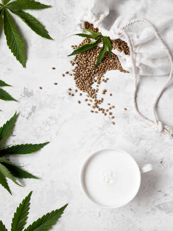 Plant vegan milk from hemp seeds in white cup on white background around cannabis leaves flat lay.
