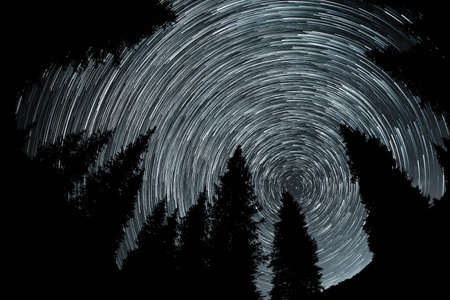 Crile stars trace at night sky with spruce silhouette in the mountains.