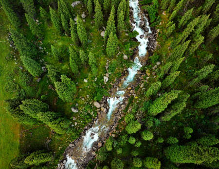 Aerial view of the mountain river in the forest. Photo taken with Drone Reklamní fotografie
