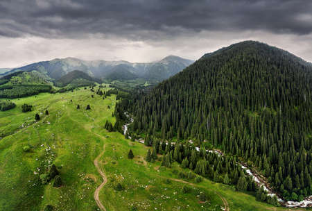 Aerial view of the mountain valley with lush forest. Photo taken with Drone