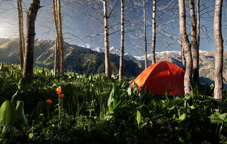Beautiful mountain landscape with orange tent in the lush forest at the sunrise