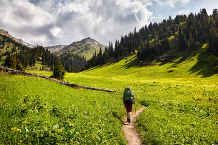 Woman tourist with backpack is walking in the green mountain valley with snowy peaks and cloudy sky background
