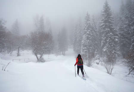 Woman wearing with show shoes is walking in the winter snowy forest in Almaty, Kazakhstan Stock Photo