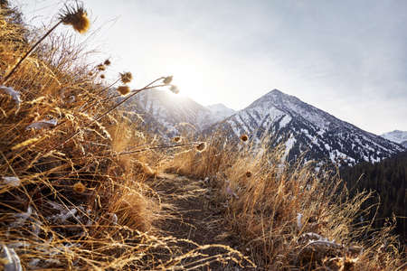 Beautiful scenery of the mountains summit with snow in Almaty, Kazakhstan. Outdoor and hiking concept