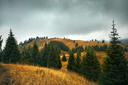 Autumn scenery of the forest in the mountain valley near Almaty, Kazakhstan