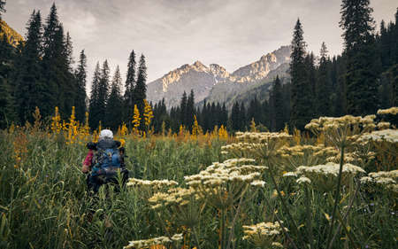 Man tourist with backpack is walking in the high grass at mountain valley with rocky peaks in Kazakhstan Stock Photo