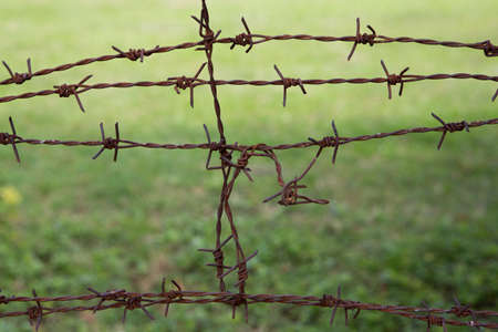 Barb wire fence and grass background photo