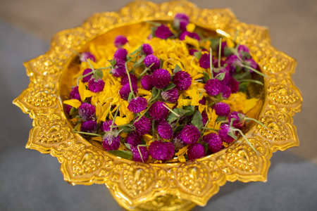 Amaranth and Mary gold petal photo