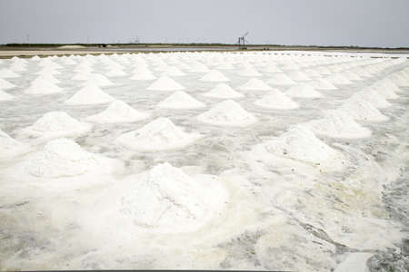 Salt field in Thailand photo