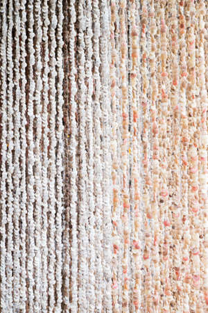 Curtains made of Sea shells Stock Photo - 21989154