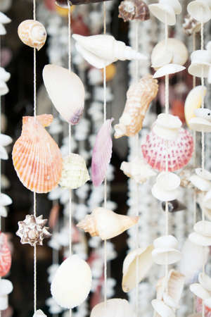 Curtains made of Sea shells Stock Photo - 21989172