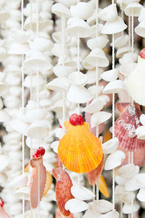 Curtains made of Sea shells Stock Photo - 21989189