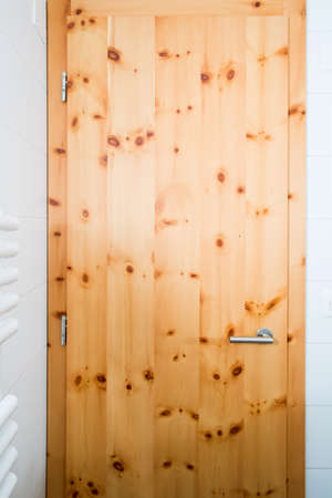 wooden door Stock Photo - 22699712