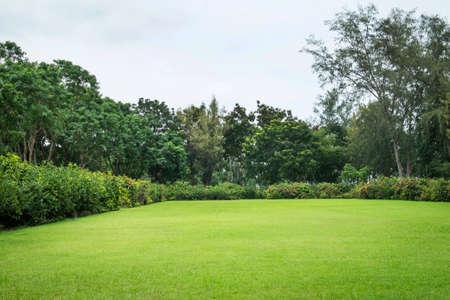 静かな庭園 写真素材