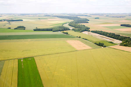 aerial photograph: Aerial photograph area on agriculture