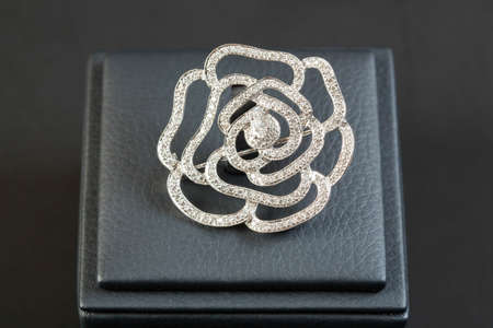 frippery: flower brooch isolated on white background