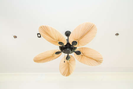 fan ceiling: Electric ceiling fan