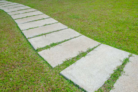 Walkway on green grass photo