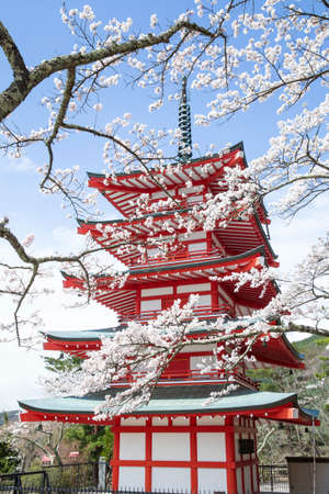 Chureito Pagoda in spring, Fujiyoshida, Japan