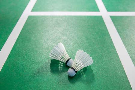badminton racket: shuttlecock in stadium