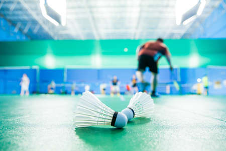 black professional: badminton - badminton courts with players competing