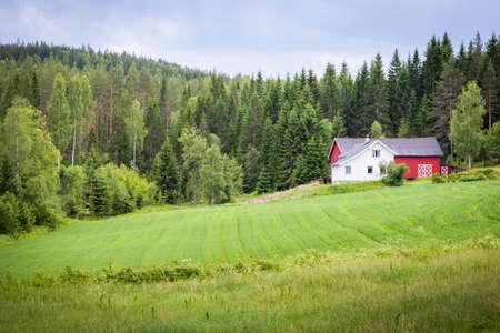 soltería: La casa solitaria en la montaña en Noruega Foto de archivo