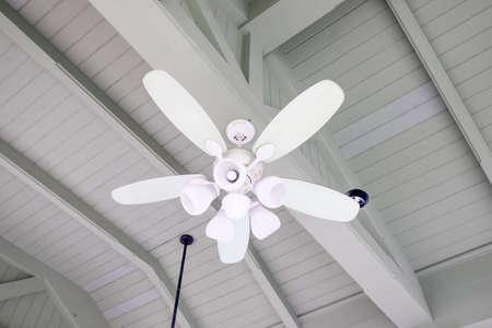 ceiling fan: Electric ceiling fan