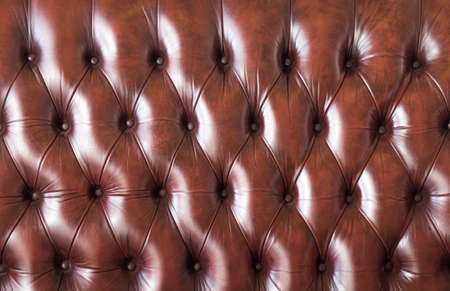 luxury texture of leather furniture decorated