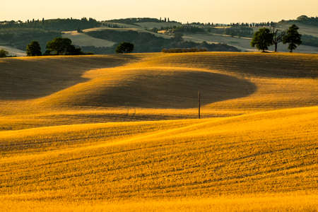 Landscape in Tuscany at in summer, italy Stock Photo - 85727474
