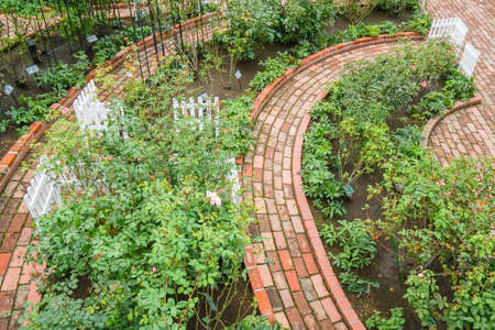 Garden detail in top view with stone walkway