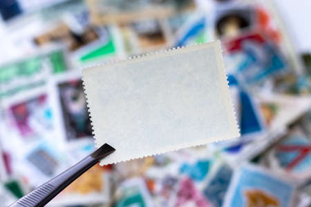 Blank postage stamp in tweezers against blurred background collection of multicolored postage stamps of different countries. Selective focus