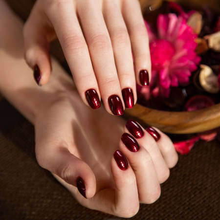 short order: Beautiful classic red manicure on female hand.  Close-up. Picture taken in the studio on the background of flowers Stock Photo