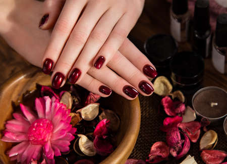 Beautiful classic red manicure on female hand.  Close-up. Picture taken in the studio on the background of flowers Stok Fotoğraf
