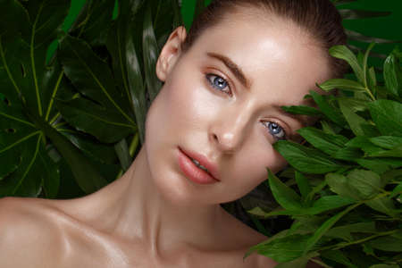 Beautiful fresh girl with perfect skin, natural make-up and green leaves. Beauty face. Photo taken in the studio. 写真素材