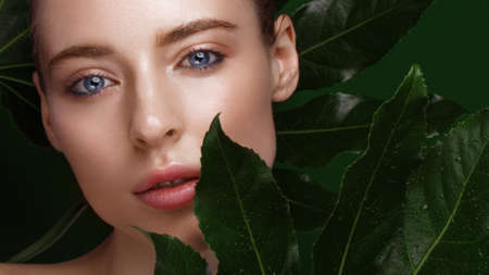 Beautiful fresh girl with perfect skin, natural make-up and green leaves. Beauty face. Photo taken in the studio. 免版税图像