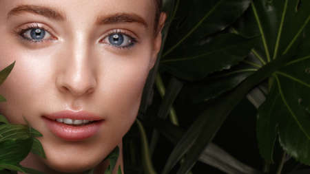 Beautiful fresh girl with perfect skin, natural make-up and green leaves. Beauty face. Photo taken in the studio. Stockfoto
