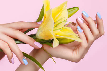 Beautiful pink and blue manicure with crystals on female hand with flowers. Close-up. Picture taken in the studio 版權商用圖片