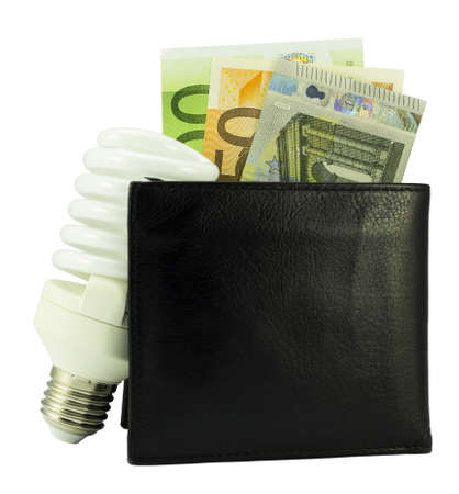 euro money: save energy concept -black wallet with euro money and light bulb