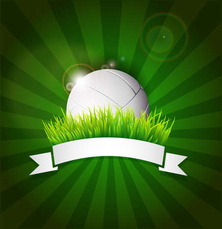ruban blanc: Volley-ball balle sur le terrain herbe avec du ruban blanc et les lumi�res effet