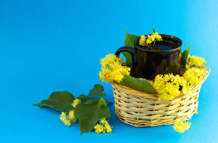 lime blossom: Black cup of tea in braided wicker basket filled with lime blossom on blue background