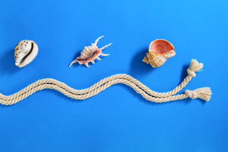 yellow star: Rope with various sea shells