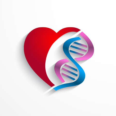 macromolecule: DNA concept.Heart with double helix symbols for medicine, genetics,biology concept Illustration