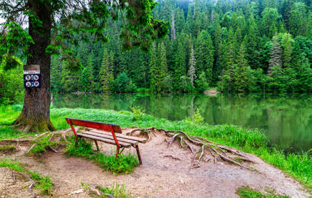 wooden bench: Wooden bench at the edge of a mountain lake