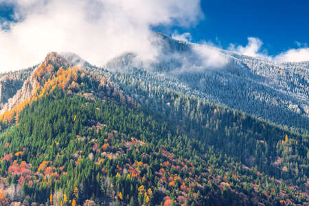 Mountains with forest in two seasons.Autumnal forest on the mountain and forest covered with snow on top