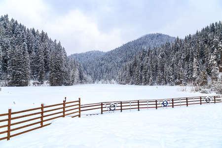 Lacu Rosu in Harghita, Romania, under the snow on winter day. Winter day on Lacul Rosu, Romania Banque d'images - 116708860