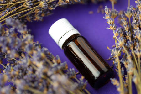 Essential oil and lavender flowers, Bottle with aromatherapy in lavender flowers