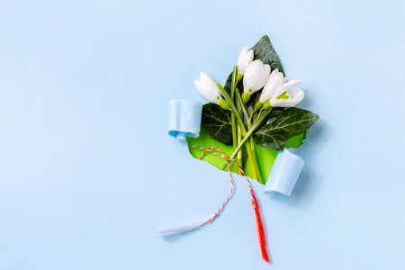 Torn paper with Snowdrop (Galanthus nivalis) flowers with white and red stripe. 8 March, Martisor, Baba Marta holiday concept. Place for text