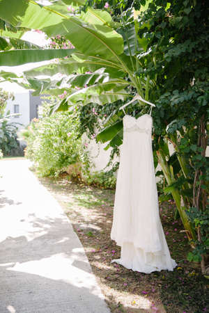 Wedding dress hanging in the garden. Sunny and hot weather.