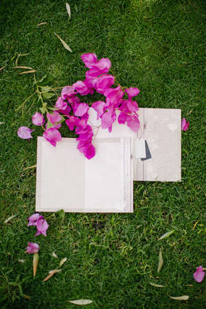 Wedding invitation. Empty plain white floor. There are bougainvillea leaves around the invitation. On the grass.